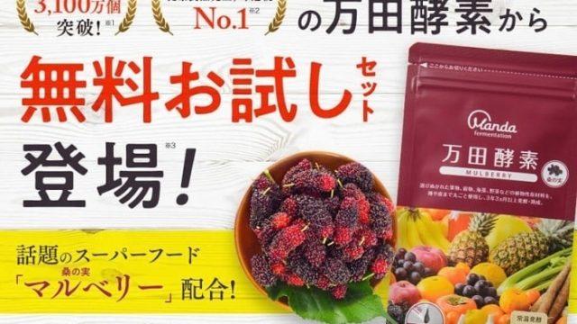 万田酵素 マルベリー 口コミ