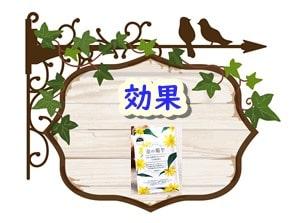 金の菊芋 効果